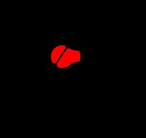 SCF Consorzio Fonografici